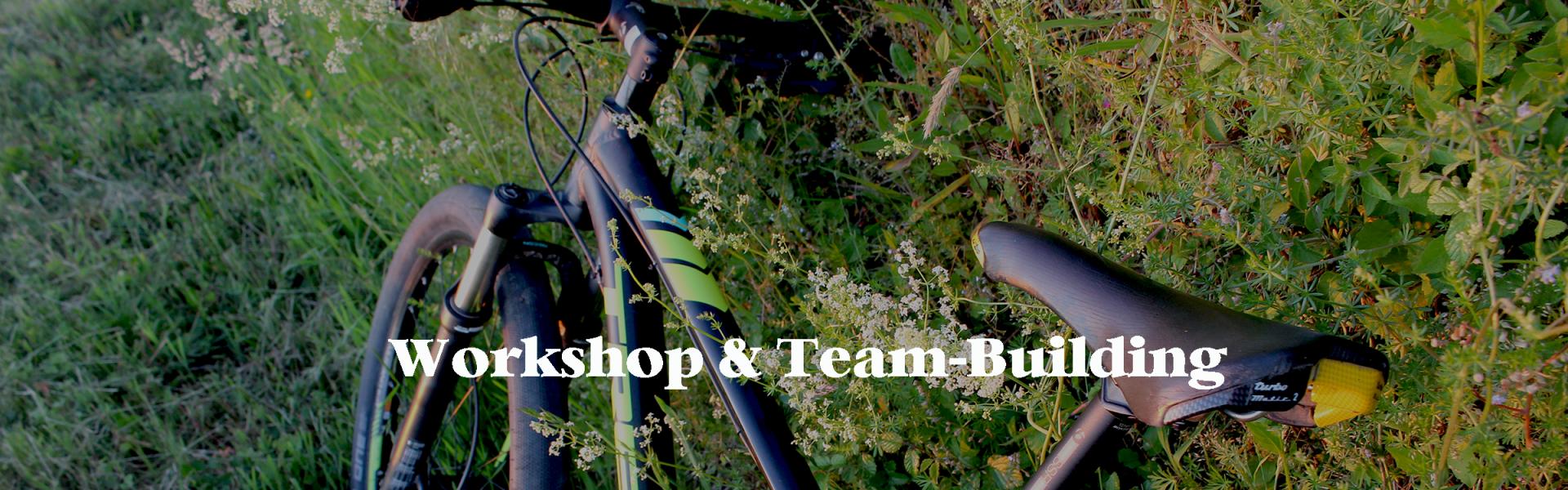 Vous recherchez une activité de team-building ?