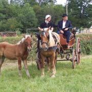 Bulhon défilé tradition 2006